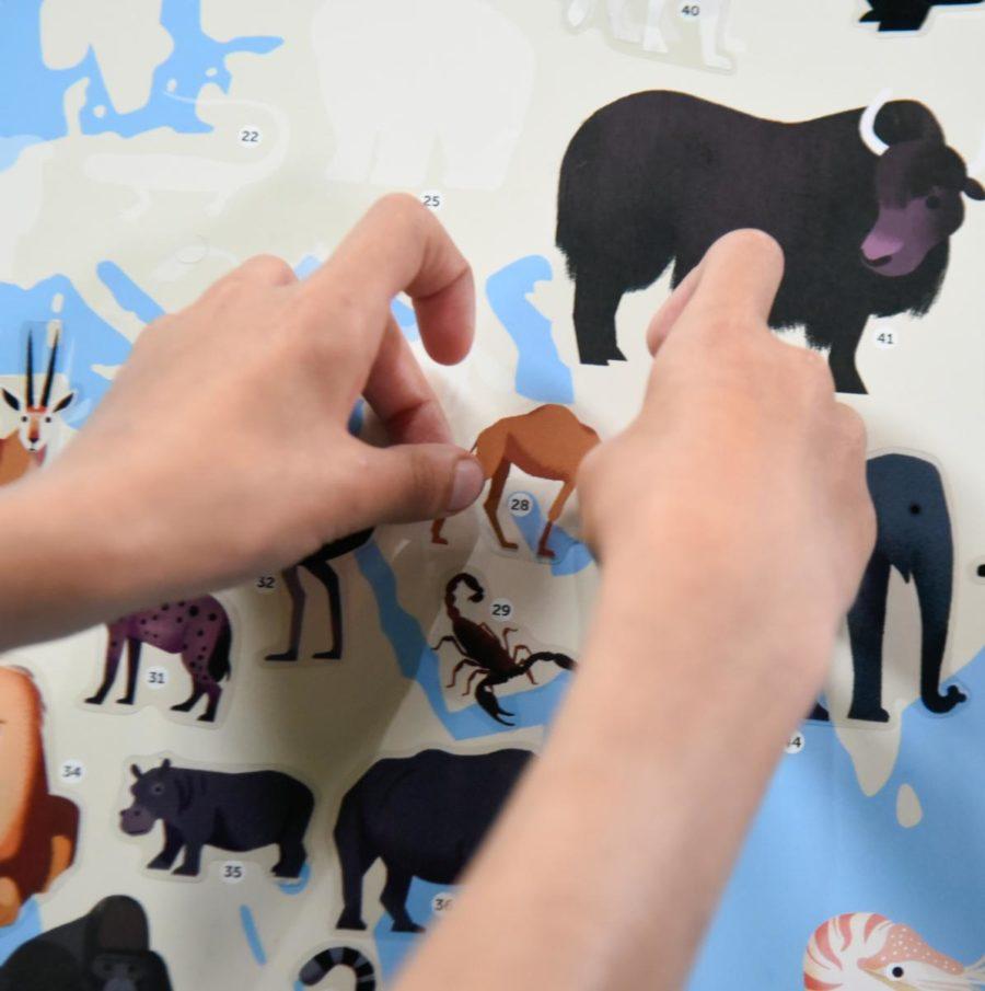 stickers faciles enfants 8 ans à Lyon